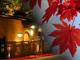 くつろぎながら、秋の京都を楽しむ。人気旅館やホテルをご紹介